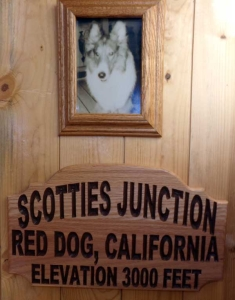 Scotties-Junction-Red-Dog-CA